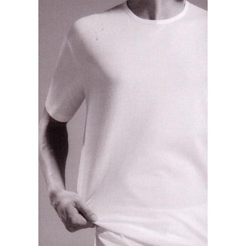 Shirt Impetus 1363002