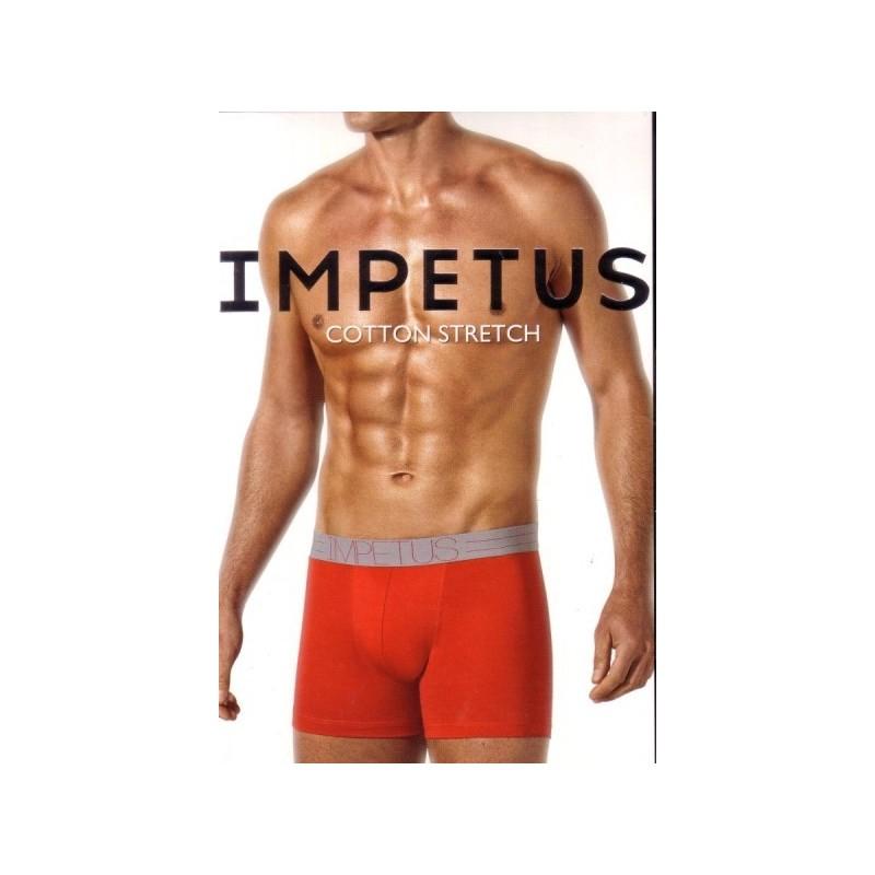 Trunk Impetus 1259289